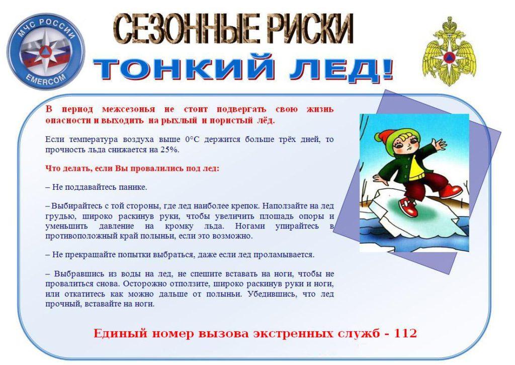 tonkiyled_1-1024x725